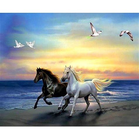 Black and White Horses | 5D Diamond Painting Kits | OLOEE