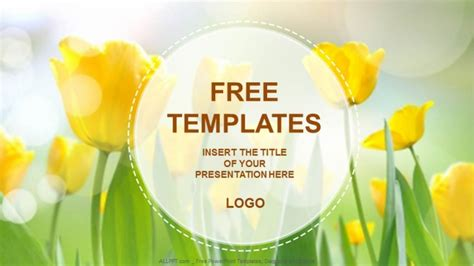 Yellow Tulips Nature PowerPoint Templates + Download Free
