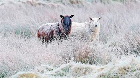 Cold snap coming to an end as wintry weather to give way