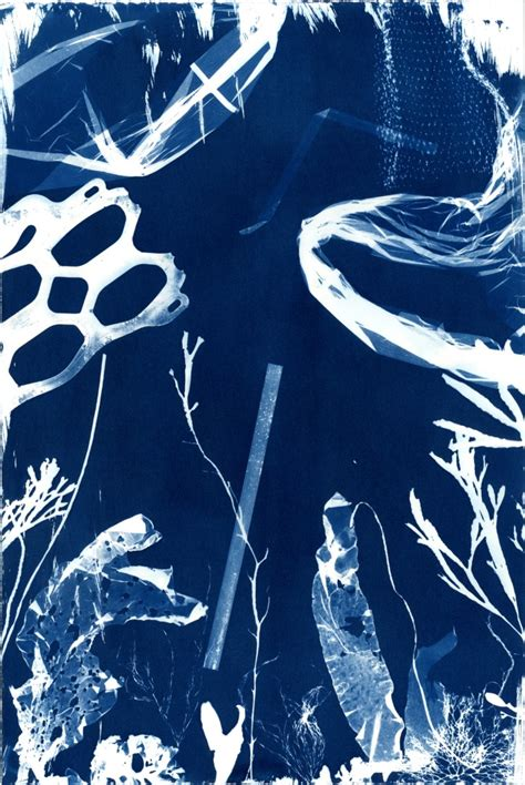 Cyanotype Impressions of the Atlantic Ocean in Maine - The