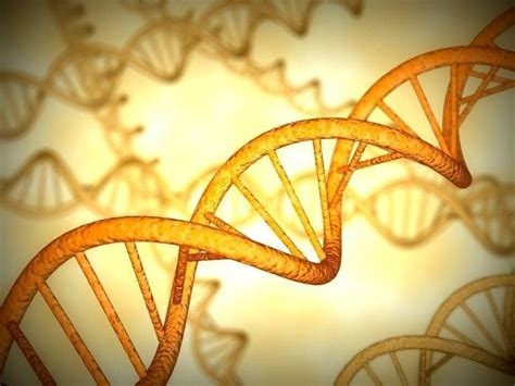 DNA: Gene chemical identified - may lead to source of life